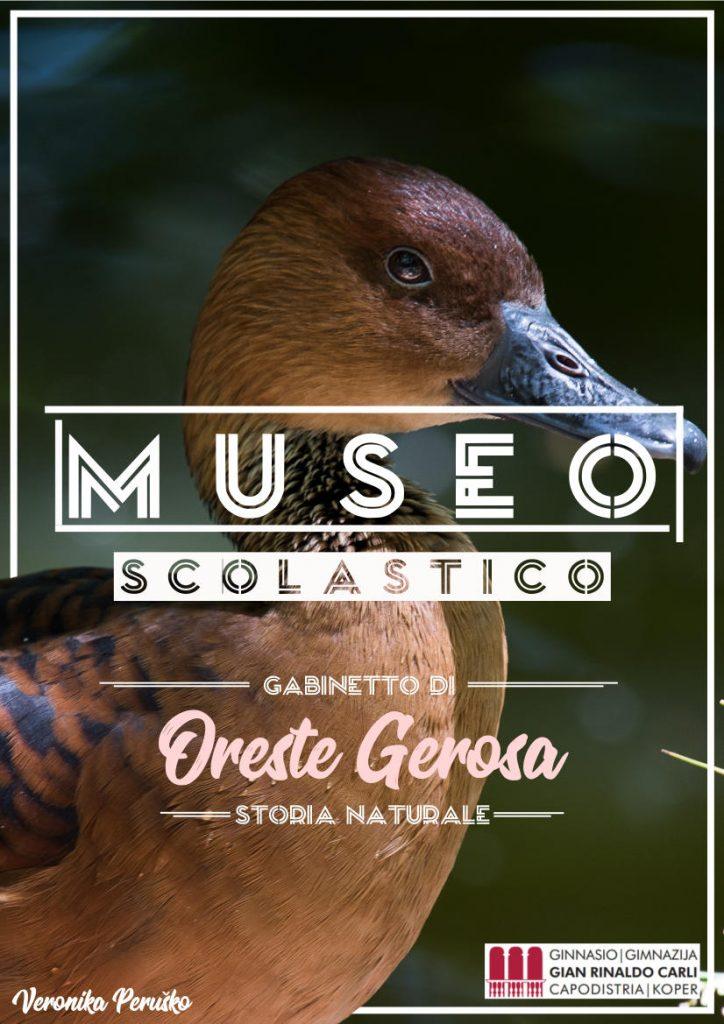Poster Museo Oreste Gerosa - di Veronika Peruško